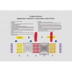 Epigenética / Evolución +...